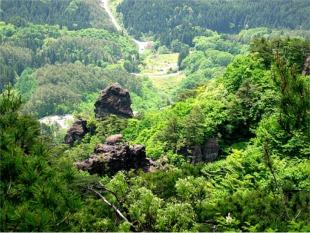 山中の景観